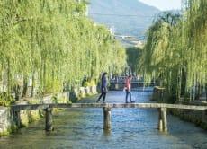 Kyoto Walking Tour—Guided Morning Tour