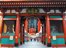 Panoramic Tokyo Bus Tour with Lunch and Bay Cruise