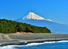 1-Day Luxury World Heritage Mt Fuji Tour