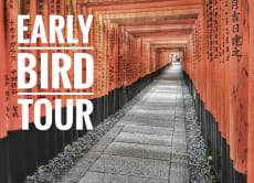 See the morning freshness of Kyoto in an early bird tour