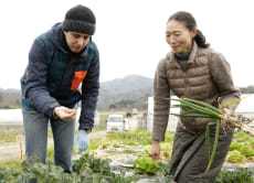 Organic Farm Tour & Cooking Class in Kyoto by the Sea
