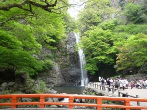 Take a half-day tour to Minoh Waterfalls and Katsuoji Temple