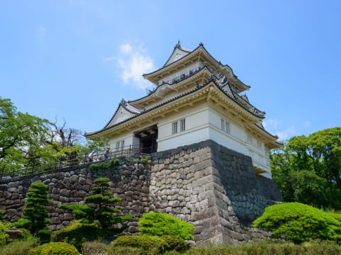 Odawara/Hakone Day Trip from Tokyo by Shinkansen and Guide
