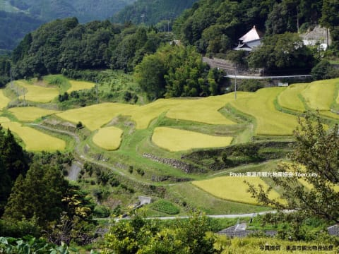 Nature Walk and Lunch at Farmer's Restaurant in Ehime