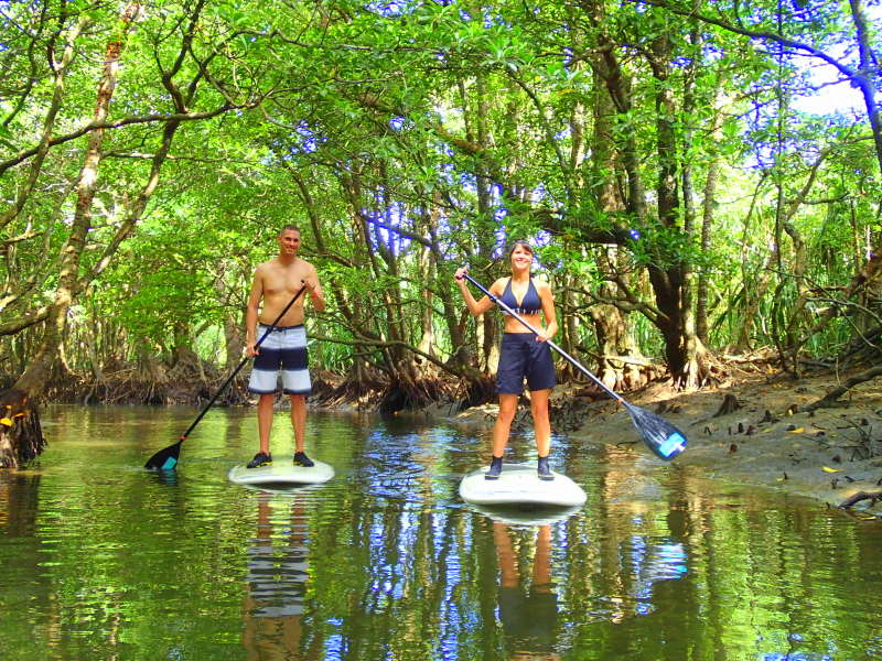 Explore Iriomote Island on a Stand Up Paddleboard!