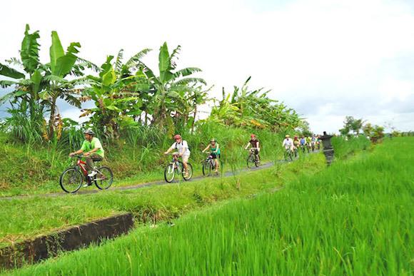 Bali Cycling Tour Explore The True Heart Of Bali Voyagin