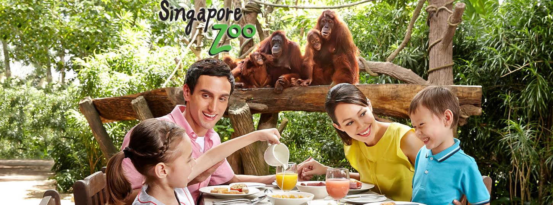 シンガポール動物園でオランウータンと朝食 Eチケット予約 ジャングル・ブレックファースト