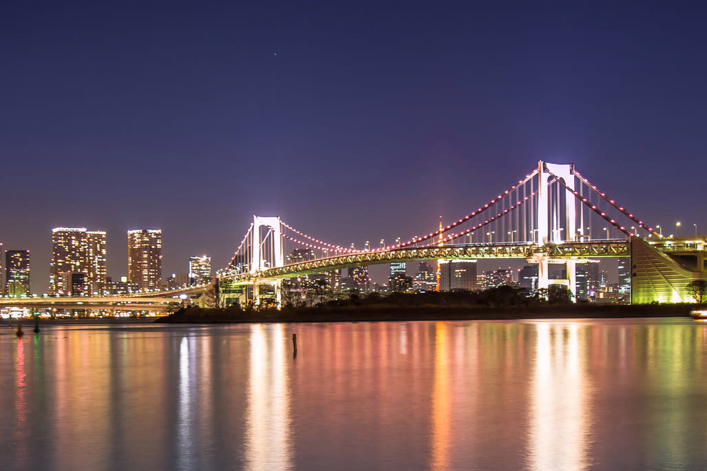 Tokyo Bay Night Cruise or Lunch Cruise
