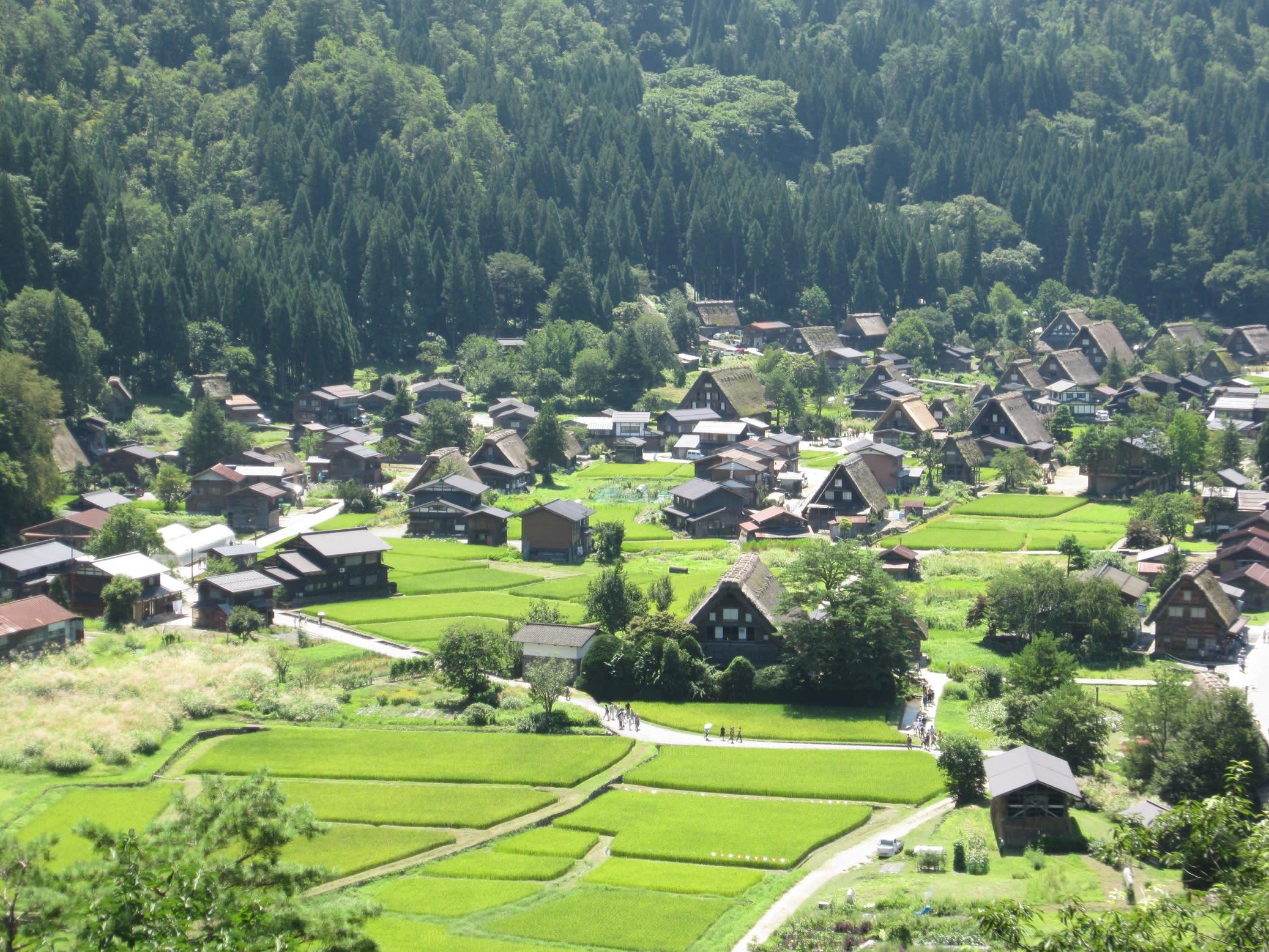 Day Trip to Shirakawago, Gokayama or Takayama from Kanazawa!
