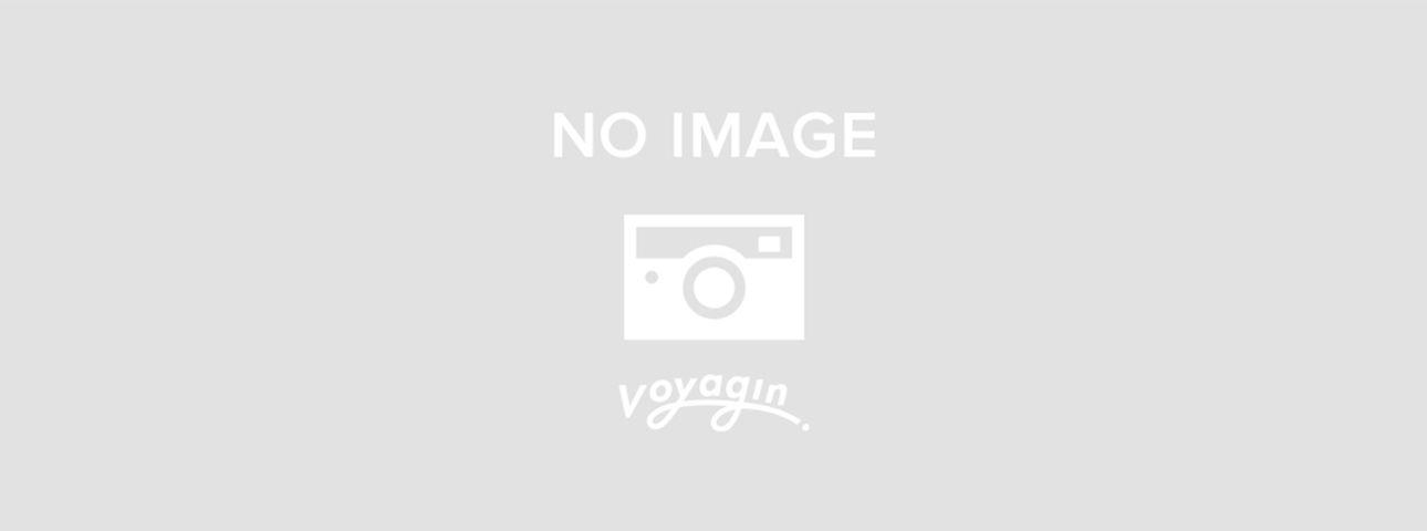バリ島のクラクラバス乗り放題チケット<島内観光に最適!>