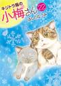 キジトラ猫の小梅さん (22)