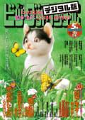 ビッグコミックオリジナル増刊 2019年5月増刊号(2019年4月12日発売)