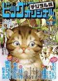 ビッグコミックオリジナル増刊 2019年7月増刊号(2019年6月12日発売)