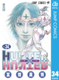HUNTER×HUNTER モノクロ版(34)