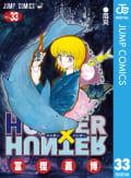 HUNTER×HUNTER モノクロ版(33)