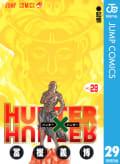 HUNTER×HUNTER モノクロ版(29)