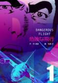 危険な飛行