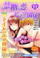 禁断の恋 ヒミツの関係 vol.12