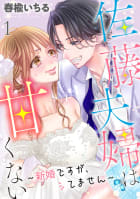 佐藤夫婦は甘くない~新婚ですが、シてません~ 1