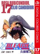 BLEACH カラー版(17)