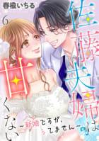 佐藤夫婦は甘くない~新婚ですが、シてません~ 6