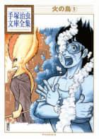 火の鳥 【手塚治虫文庫全集】(9)