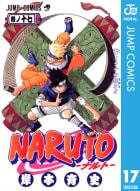 NARUTO―ナルト― モノクロ版(17)