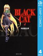 BLACK CAT(4)