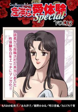 危険な愛体験special vol.13