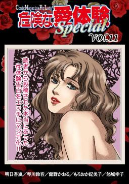 危険な愛体験special vol.11