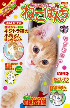 ねこぱんち No.150 猫世界征服号