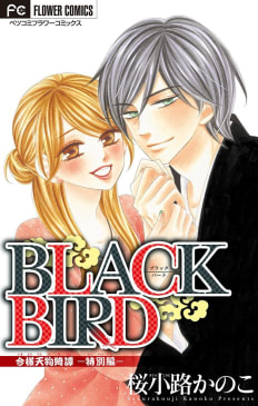 BLACK BIRD 特別編【マイクロ】