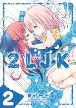 2LJK(2)
