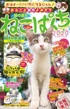 ねこぱんち No.167 猫の庭号