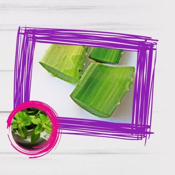 Image of Vegan Aloe vera Cucumber Smoothie Recipe