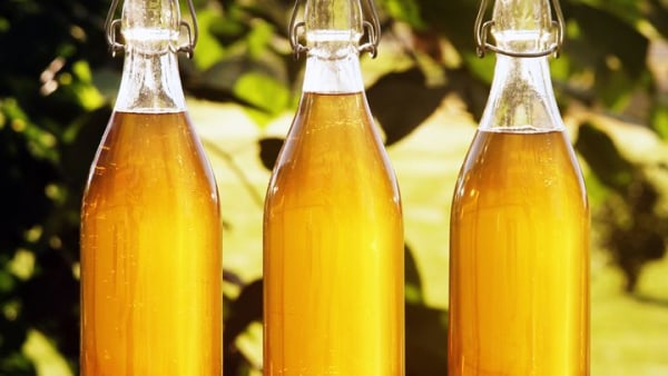 Image ofEasy & Delicious Cyser (Apple Mead) Recipe Made Possible By Brewsy Bags