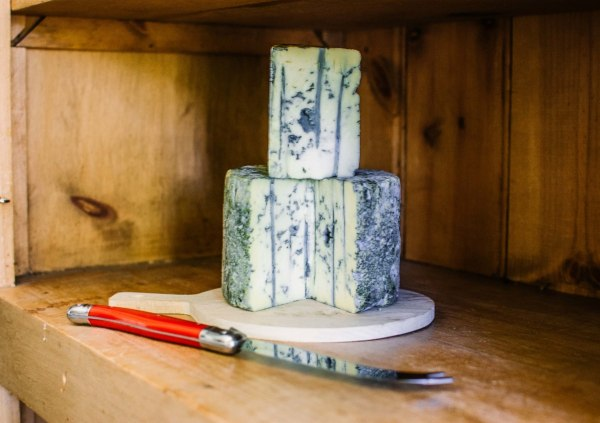 Image of Homemade Blue Cheese Recipe