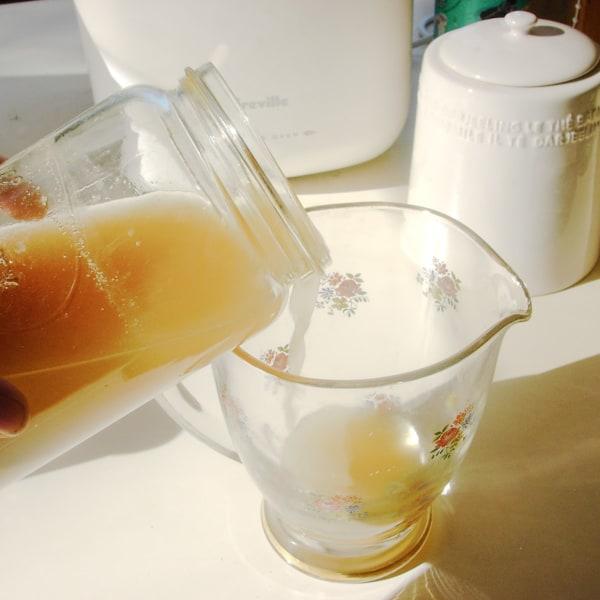 Image of Proper Old-fashioned Ginger Beer using a bug