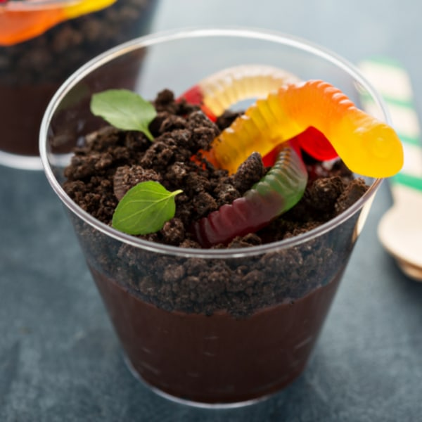 Image ofSugar Free Worms & Dirt