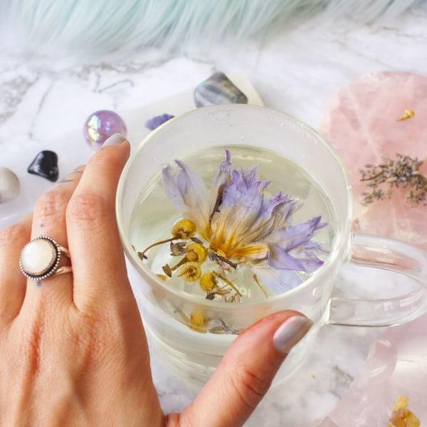 Image ofBlue Lotus Tea - Intuitive Recipe