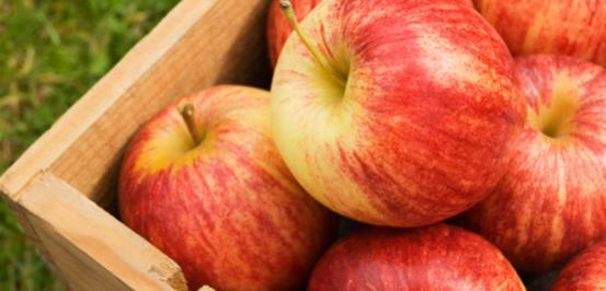 Image ofApple Spice Protein Shake