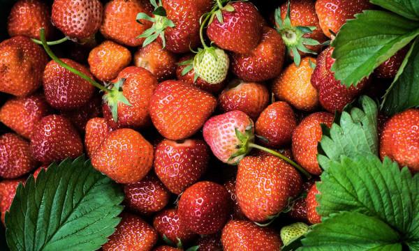 Image of Strawberry Margarita Protein Shake