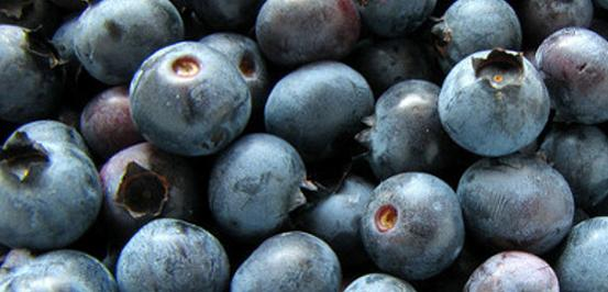Image ofBlueberry Bananza Protein Shake