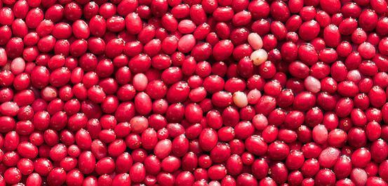 Image of Cranberry Craze Protein Shake