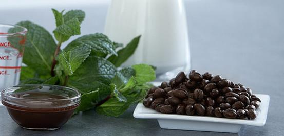 Image ofChocolate Mocha Mint Protein Shake