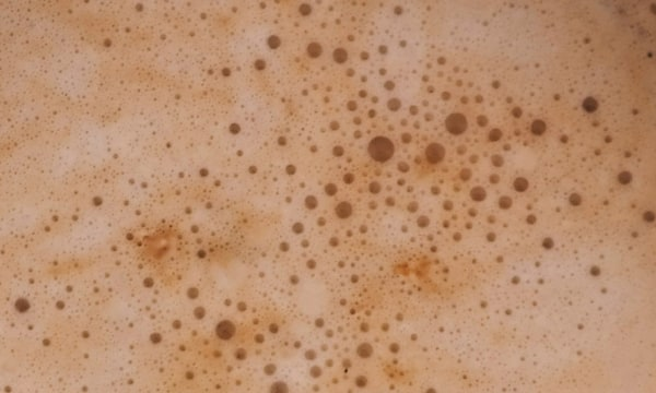 Image ofButterbeer Protein Shake