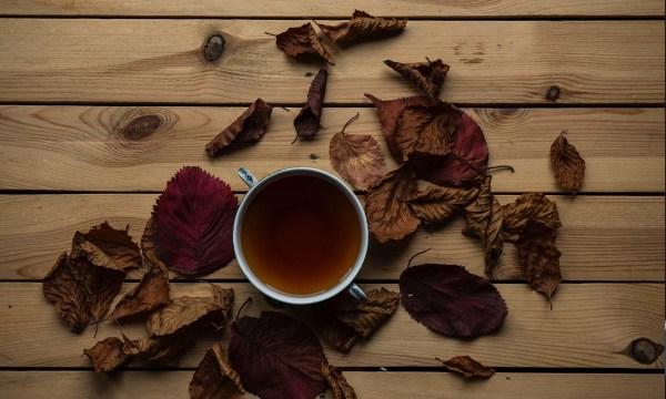 Image ofVanilla Chai Latte Protein Shake