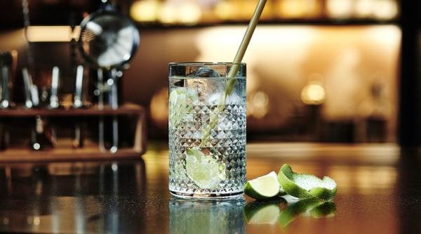 Botanical Gin Tonic Rezept