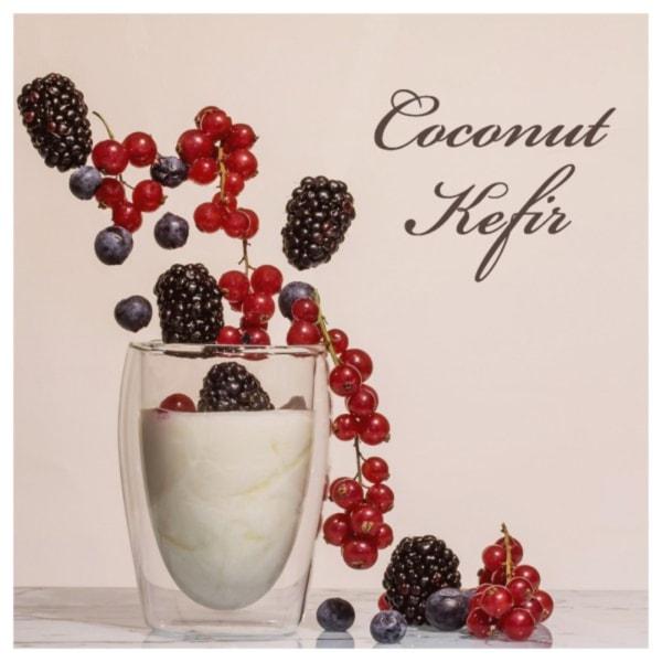 Image of Coconut Kefir