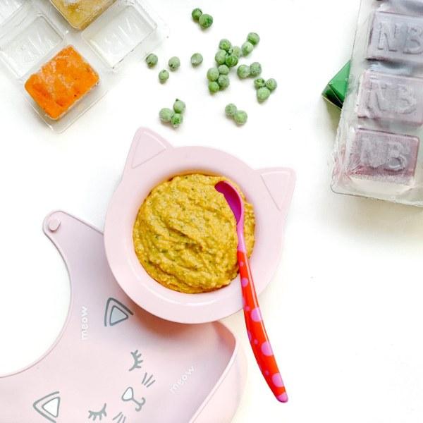 Image of Salmon, Pumpkin, Zucchini & Pea Puree